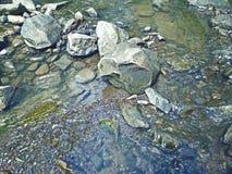 Stenarna i floden Arkivfoto