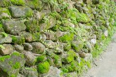 Stenarna staplas mot det wal arkivfoton