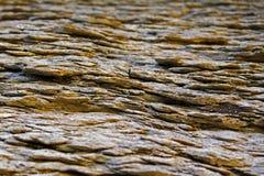 Stenbakgrund/textur Arkivbilder