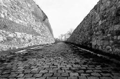 Stenbana från gammal slott Royaltyfria Bilder