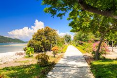 Stenbana längs havsstranden bland buskeväxter Royaltyfri Foto