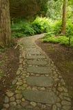 Stenbana till och med skogen Arkivfoto