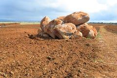 Stenblock i fältet. Arkivbilder
