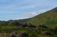 Stenblock i kullarna Royaltyfri Foto
