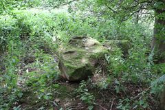 Stenblock i skogsmark Royaltyfria Bilder