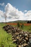 Stenblock och vallmo i Tuscany Fotografering för Bildbyråer