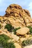 Stenblock som är röda vaggar bildande på den fotvandra slingan i Joshua Tree National Park, Kalifornien, Förenta staterna arkivbilder