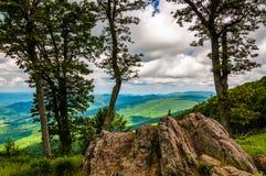 Stenblock, träd och sikt av den blåa Ridgen på en förbise i den Shenandoah nationalparken royaltyfria bilder