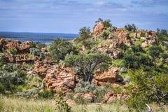 Stenblocklandskap i den Mapungubwe nationalparken, Sydafrika Arkivbild