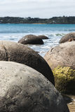stenblockmoeraki New Zealand arkivfoton