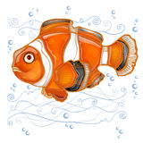 Stencil fish clown cartoon Stock Image