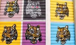 Stencil graffiti tiger royalty free stock images