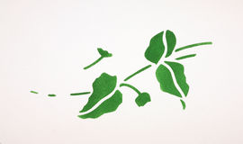 Stenciled Leaves Royalty Free Stock Photos