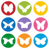 Stencils. Colored butterflies on a white background Royalty Free Stock Photo