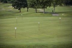 Stendardi in fori di golf fotografie stock