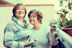 Stående av lyckliga kvinnliga pensionärer som dricker te och att le Arkivfoto
