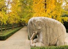 Stenelefanten arkivfoton