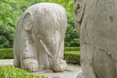 Stenelefanter arkivfoto