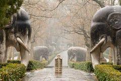 Stenelefanter 1 royaltyfria foton