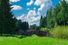 Stenen överbryggar i skogen Arkivbild