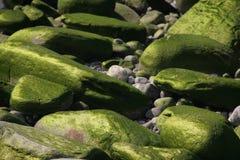 stenen Stock Afbeeldingen