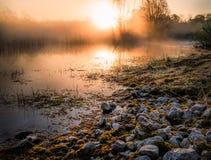 Stenen in een moeras vóór de het toenemen zon Royalty-vrije Stock Fotografie