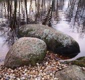Stenen en bezinningen van bomen in het water Stock Afbeelding