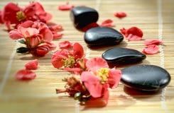 Stenen en bloemblaadjes Stock Afbeeldingen