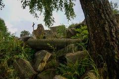 Stenen en boom op oude puinstapel vanaf 1945 stock afbeelding