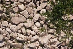 Stenen en gras Stock Foto's