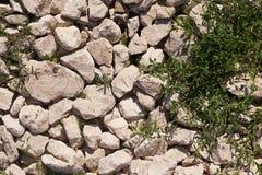 Stenen en gras Royalty-vrije Stock Afbeeldingen