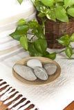 Stenen en installaties in een kuuroord Stock Foto