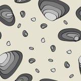 Stenen en peeble Stock Fotografie