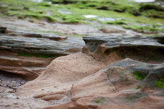 Stenen en rotsen met groene algen worden behandeld die Stock Afbeelding