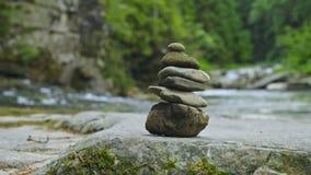 Stenen fiska med drag i, med skog- och bergfloden på bakgrund stock video