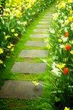 Stenen går vägen som spolar i trädgård Royaltyfri Fotografi
