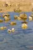 Stenen in het water royalty-vrije stock afbeelding