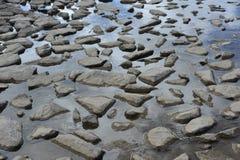 Stenen in het water Royalty-vrije Stock Fotografie