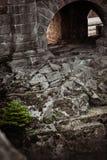 Stenen met groen stock afbeeldingen