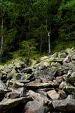 Stenen met mos en korstmos worden behandeld dat royalty-vrije stock foto's