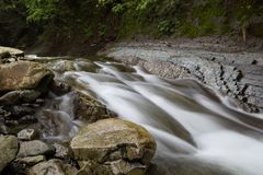 Stenen op de bank van bosrivier stock foto's