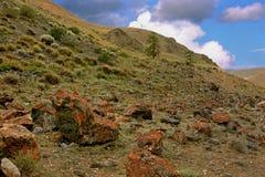 Stenen op de helling van de Altai-Bergen Stock Foto