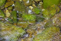 Stenen op een bodem van een kreek stock foto