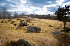 Stenen op gebied Royalty-vrije Stock Foto