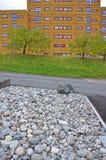 stenen op het gebied voor het huis worden opgeslagen dat royalty-vrije stock afbeelding