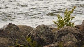 Stenen op het strand stock footage