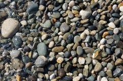 Stenen op het strand in Sotchi stock afbeelding