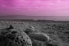 Stenen op het strand stock fotografie
