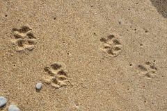 Stenen op het zand royalty-vrije stock foto's