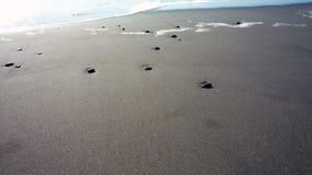 Stenen op het zand Royalty-vrije Stock Foto